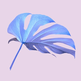 보라색 몬스테라 잎 그림