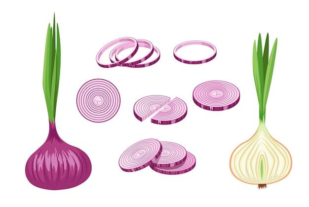 Purple onions, garden vegetable, eco farm production