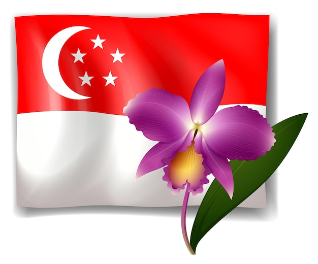 Purple orchid and singapore flag