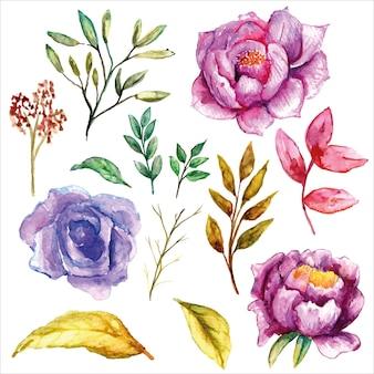 紫の牡丹セット水彩画と柔らかい色の葉