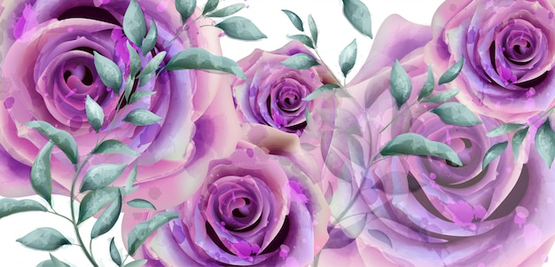 Purple roses watercolor banner