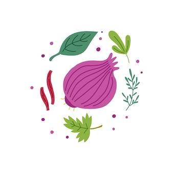 Фиолетовый салатный лук с зеленью. вектор овощи рисованной