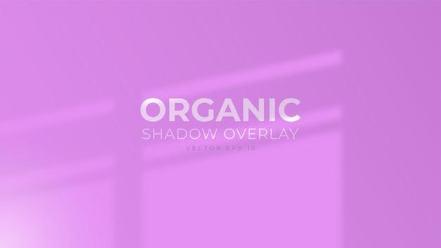 창 그림자 오버레이가 있는 보라색 벽