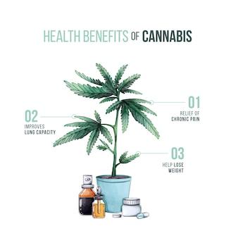 麻のインフォグラフィックの目的