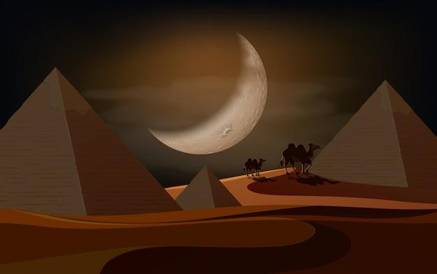 Ночная сцена пирамиды