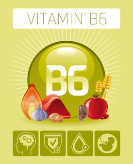 Pyridoxine vitamin b6 rich food icons with human benefit. healthy eating flat icon set. diet infographic chart poster with haricot, walnut, liver, pomegranate, garlic.