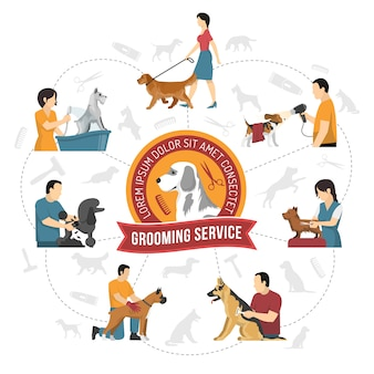 Qualified grooming service