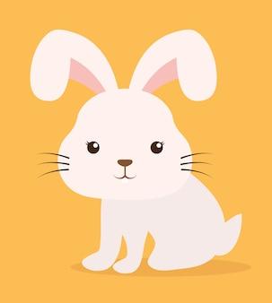 Rabbit cartoon pet animal