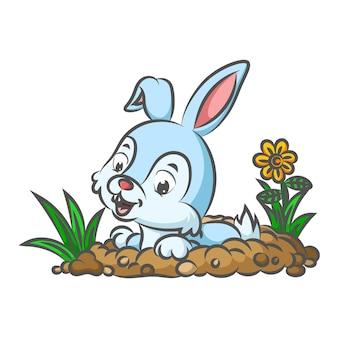 庭に穴を開けるために地面を掘るウサギ