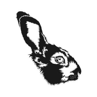Rabbit head face sketch vector design inspiration