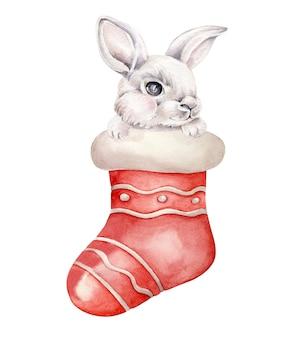 Кролик в новогоднем носке