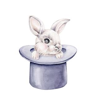 帽子をかぶったウサギ