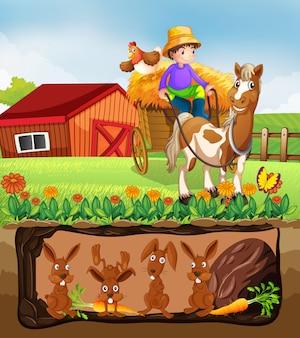 지하 농장에 사는 토끼