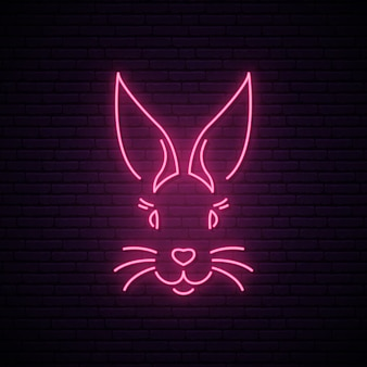 Rabbit neon sign.