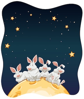 Rabbits in the moon