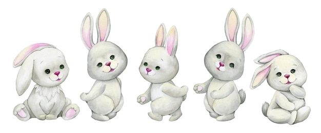 ウサギ、座っている、水彩画の動物、漫画スタイル、