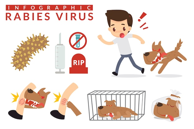 Rabies cartoon infographic
