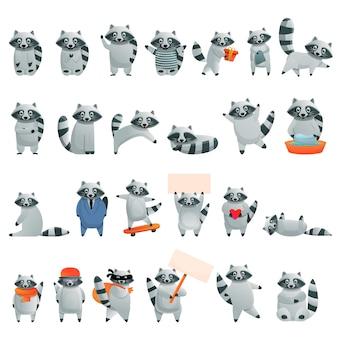 Raccoon character set, cartoon style
