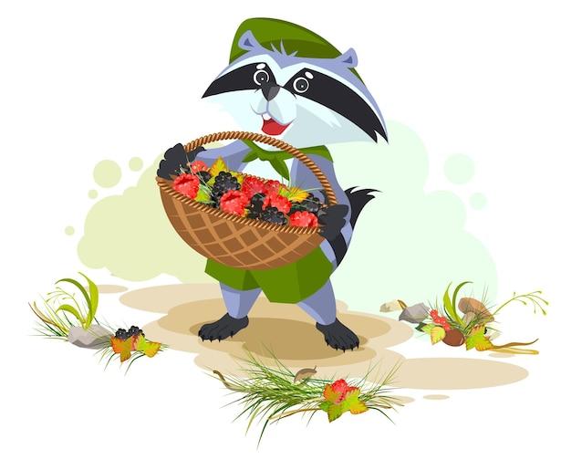 Енот держит корзину, полную ягод. ежевика и малина. векторные иллюстрации шаржа