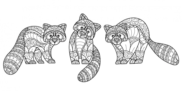 Raccoon pattern. hand drawn sketch illustration for adult coloring book