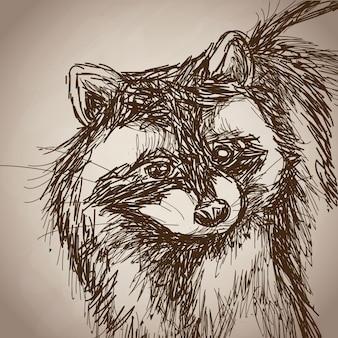 アライグマの肖像画の森の手描きのヴィンテージ