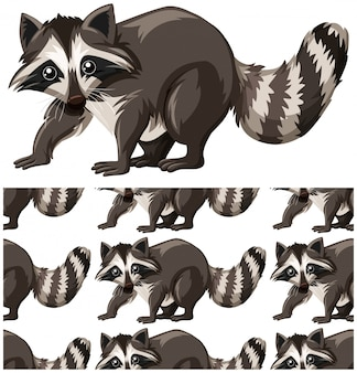 Raccoon seamless pattern isolated on white