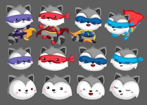 Raccoon superhero collection
