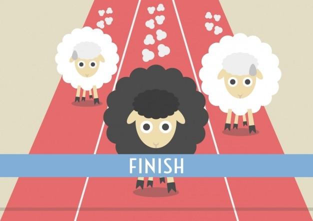 Corsa di pecore disegno