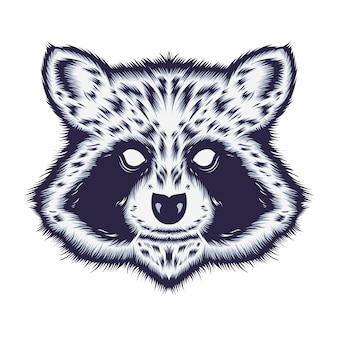 Racoon illustration
