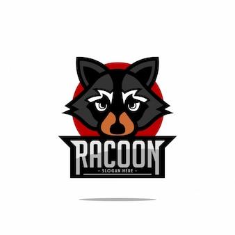 Логотип racoon