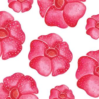 Raflesia flower watercolor