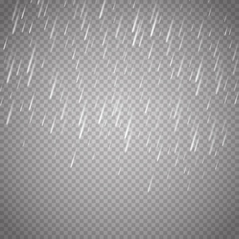 Rain isolated on transparent background.