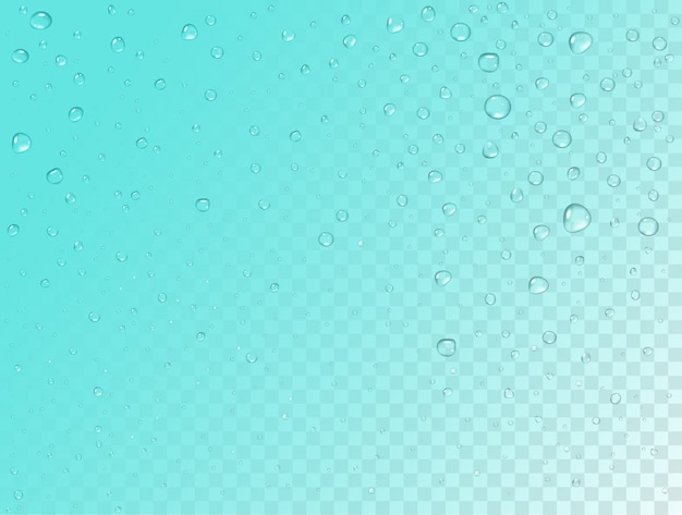 Rain pattern on transparent background. pure realistic water drops on window glass surface