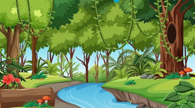 낮 장면에서 열대 우림 또는 열대 우림