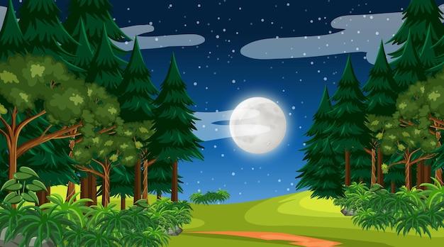 밤하늘에 달이 있는 열대우림이나 열대 우림