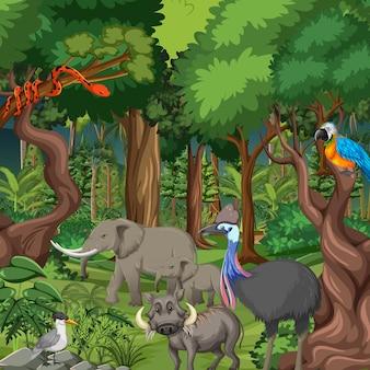 野生動物と熱帯雨林のシーン