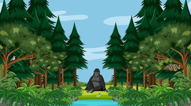 Foresta pluviale o foresta tropicale in scena diurna con un gorilla