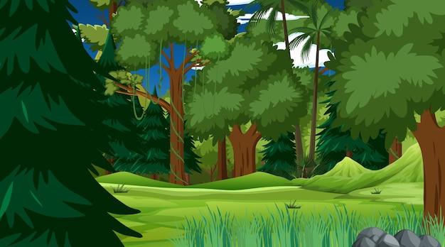 Foresta pluviale o foresta tropicale nella scena diurna