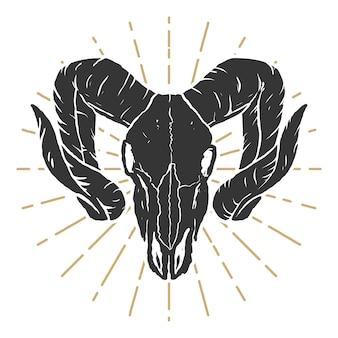 Ramの頭蓋骨のイラスト。ラベル、看板、ロゴ、ポスターの要素。図