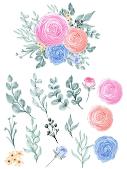Ranunculus isolation watercolor flower and leaf
