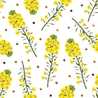 Rape flowers seamless pattern on white