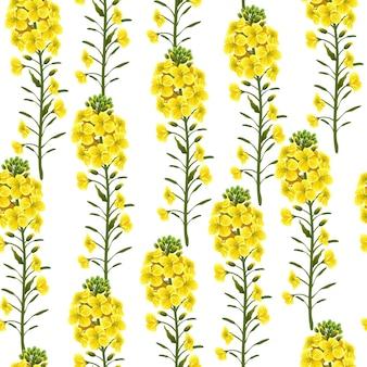 菜の花黄色い花のシームレスなパターン