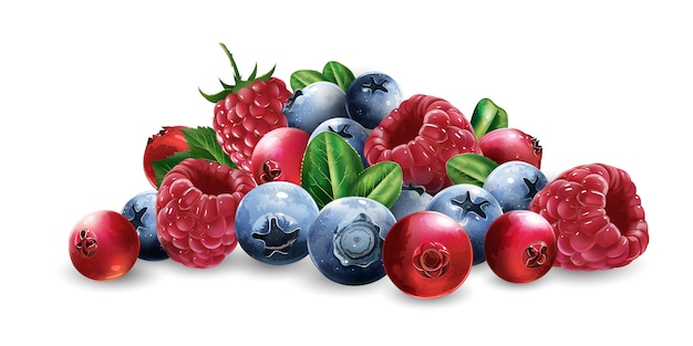 Raspberries, cranberries, blueberries and strawberries