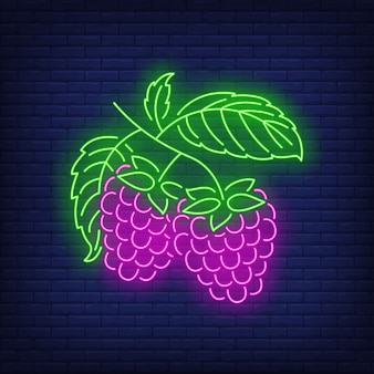 Raspberries neon sign.