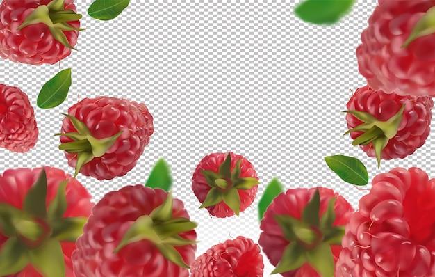 Малиновый фон. полет малины с зелеными листьями. малина падает под разными углами. плоды малины движения целы. векторная иллюстрация