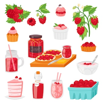 Raspberry  berrying ripe red berry for fresh juice or juicy jam and sweet dessert cake or cupcake with ice cream illustration berrylike set  on white background