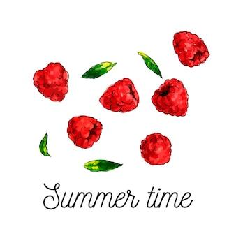 Raspberry watercolor illustration  hello summer slogan