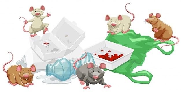Крысы в куче мусора