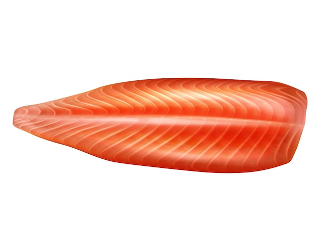 Raw salmon fish peeled fillet 3d vector realistic isolated illustration. seafood fillet, trout fresh steak or red fish.