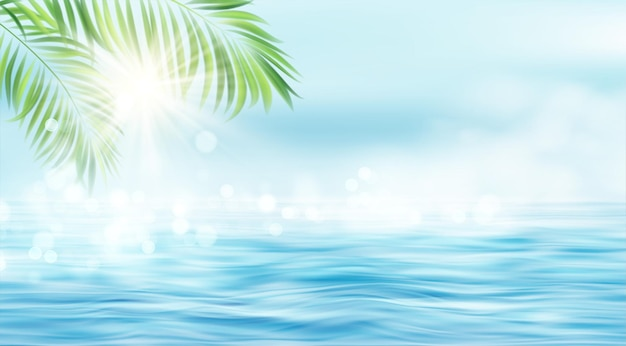 The rays of the sun and the leaves of the palm tree on the sea